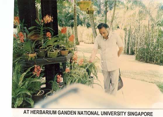 At Herbarium Ganden National University Singapore
